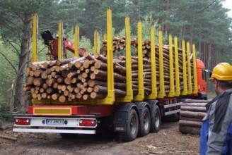 Mega Полуприцеп лесовоз