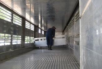 Тонар-9826-0000010 Полуприцеп - скотовоз для перевозки свиней в три яруса